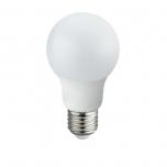 10600C  LED BULB