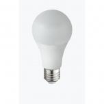 10767C  LED BULB